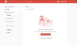 Review do todoist